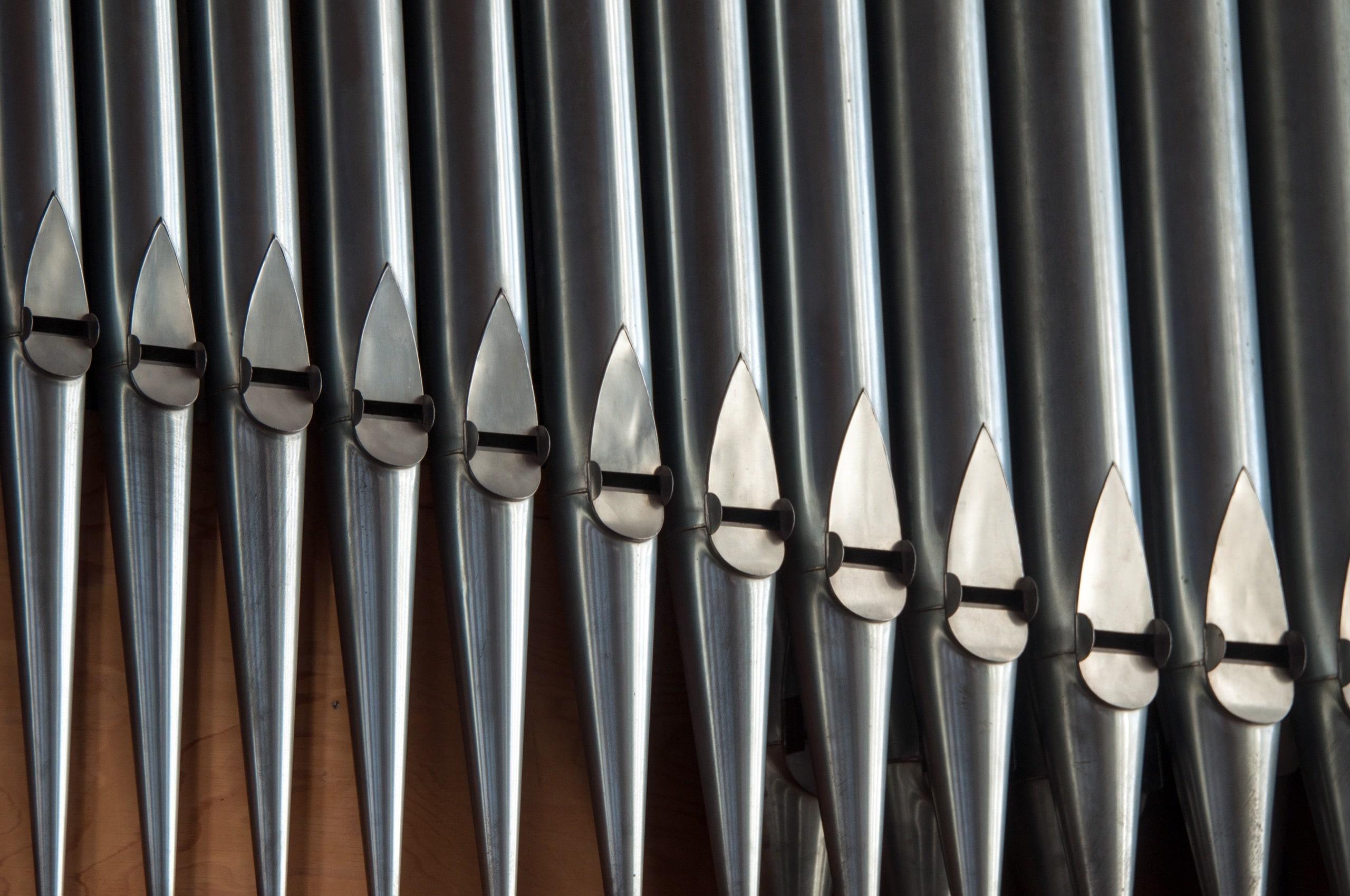 Organ Pipes Close-up